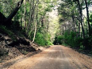 laguna verde - estrada